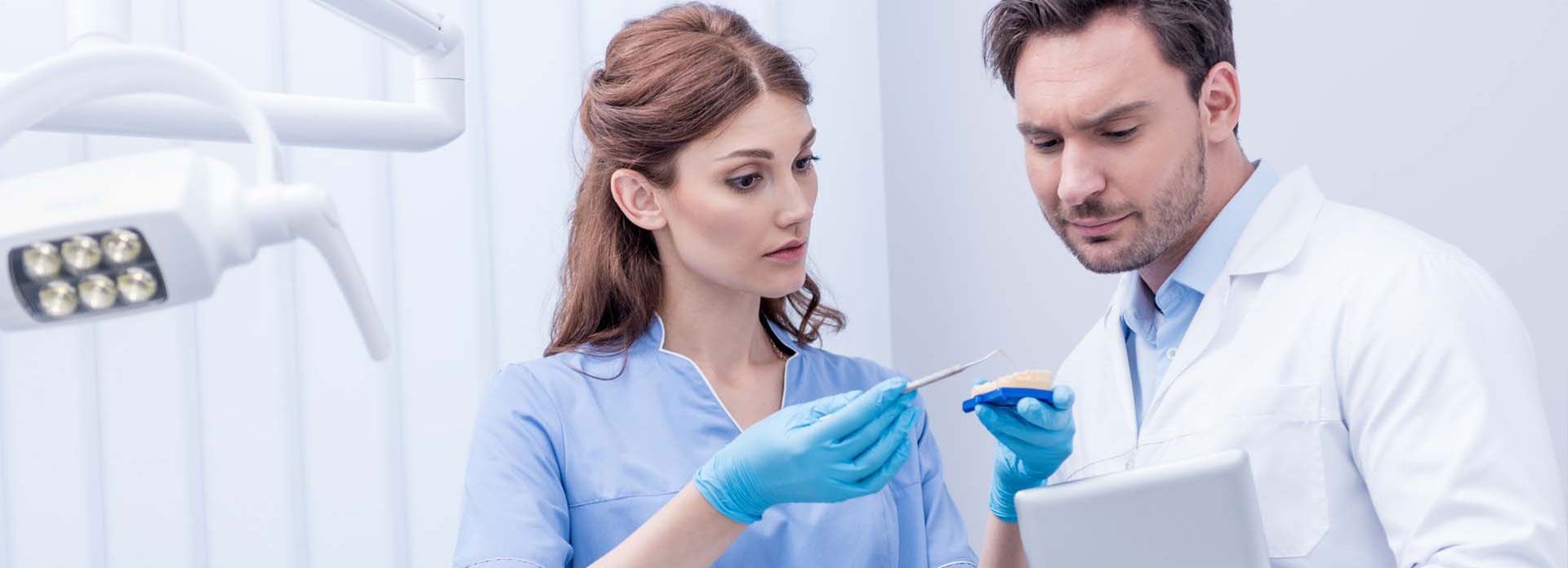 Dentists discussing with a dental model
